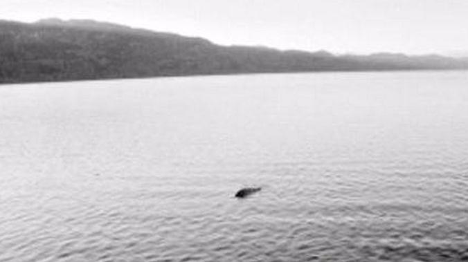 男子钓鱼,水坑中发现异样,随后的一幕让所有人不敢相信自己的眼睛